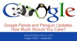 Google Panda and Penguin Updates. How Much Should You Care?
