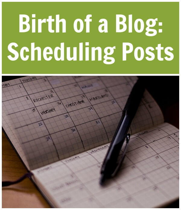 Thinking Outside The Sandbox: Business Birth-of-a-Blog-Scheduling-Posts Birth of a Blog: Scheduling Posts All Posts Blogging Motivation  scheduling post calendar post mom blog blogging