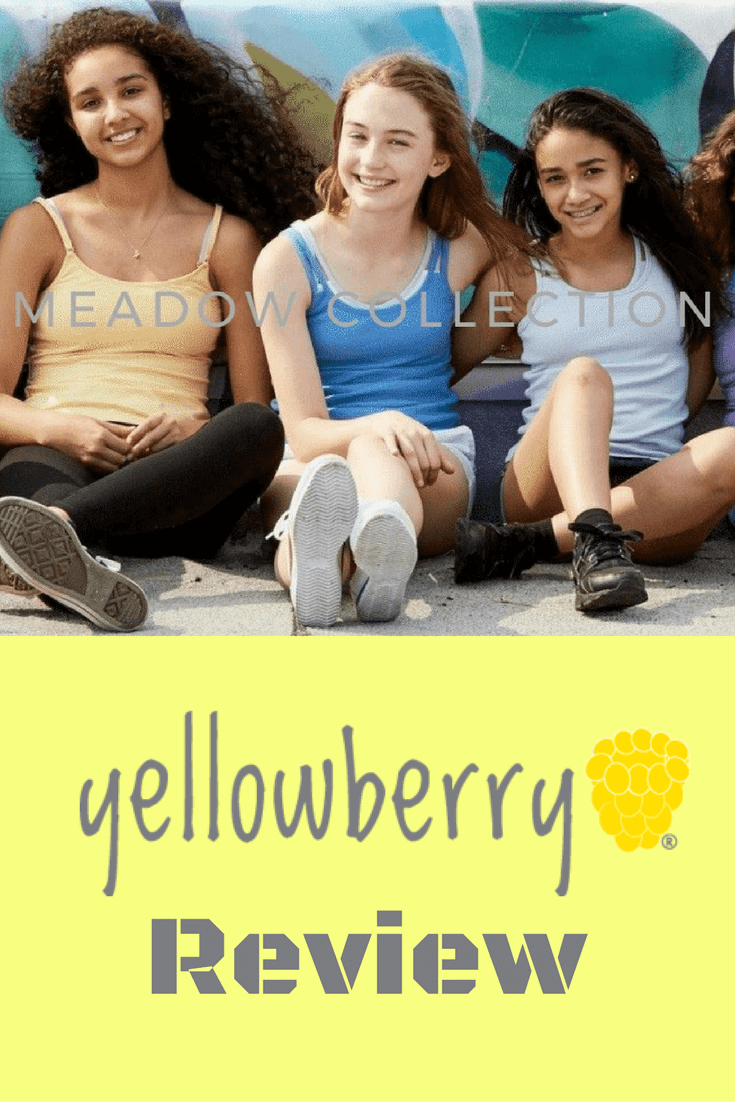 Thinking Outside The Sandbox: Business Yellowberry-Review Brand Analysis Yellowberry Blogging  Yellowberry Review