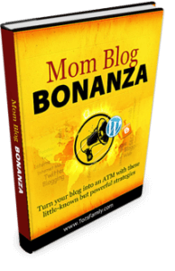 We want to show you how to start your own mom blog. In our eBook How To Start A Mom Blog we will give you all of the information you need to succeed.