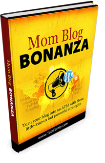 Thinking Outside The Sandbox: Business Mom-Blog-Bonanza-ebookm What is Your Website or Blog Grade? All Posts Blogging Small Business TOTS Business  website Speed up your website quick tip boost traffic blog traffic