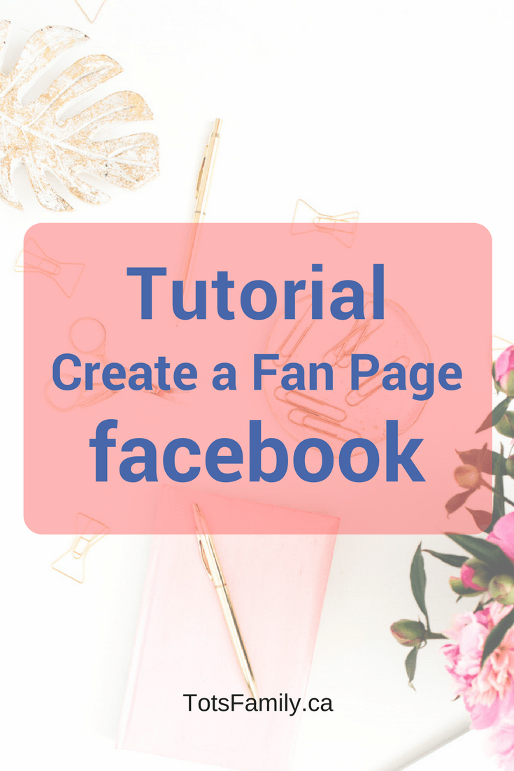 As part of my Social Media  101 series I will help you set up and utilize various social media outlets. Facebook Part 1 - How to create a Facebook fan page.